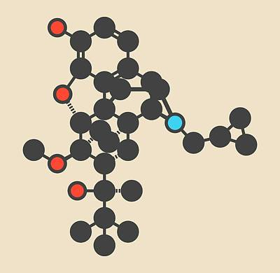 Buprenorphine Drug Molecule Art Print by Molekuul