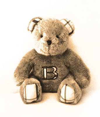 Burberry Bear Art Print by Gina Dsgn