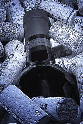 Stopper Photograph - Buried Wine Bottle by Tom Mc Nemar