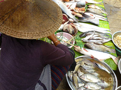 Photograph - Burmese Lady Cleaning Fish by Ralph A  Ledergerber-Photography