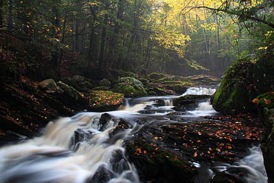 Andover Photograph - Burnap Brook by Andrea Galiffi