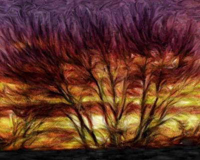 Burning Bush Digital Art - Burning Bush by Brian Sasse
