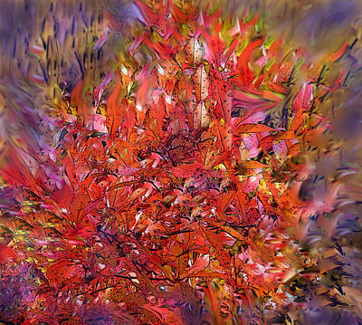 Digital Art - Burning Bush by Ian  MacDonald
