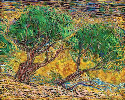 Burning Bush Digital Art - Burning Cedars Of Moses by Richard Glen Smith