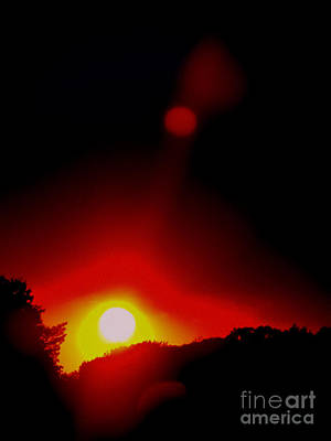 Photograph - Burning Red by Colleen Kammerer