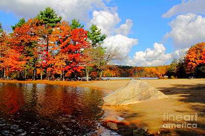 From The Kitchen - Burr Pond by Jesse Ciazza