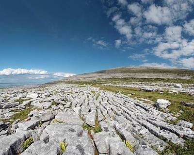 Burren Photograph - Burren Limestone Pavement by Sinclair Stammers