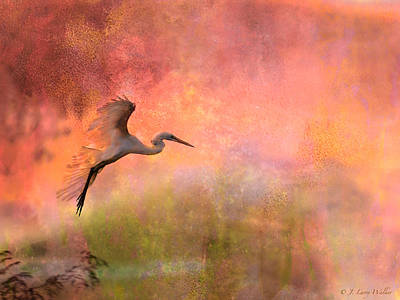 Digital Art - Burst Of Color Egret by J Larry Walker