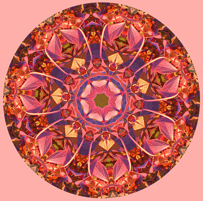 Photograph - Burst Of Fall Mandala by Beth Sawickie