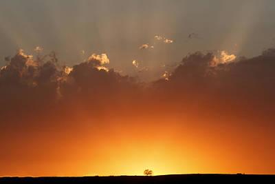 Photograph - Burst Of Light by Scott Bean