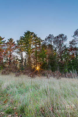 Prairie Sunset Wall Art - Photograph - Burst Thru The Woods by Andrew Slater