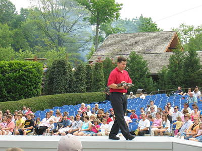 Shows Photograph - Busch Gardens - Animal Show - 12129 by DC Photographer