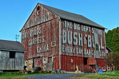 Bush And Bull Roadside Barn Art Print by Paul Ward