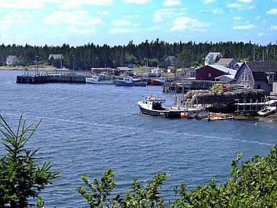 Photograph - Bush Island Nova Scotia by George Cousins