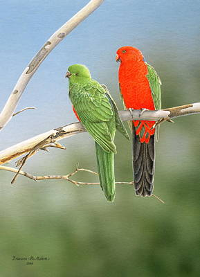 Painting - Bush Monarchs - King Parrots by Frances McMahon
