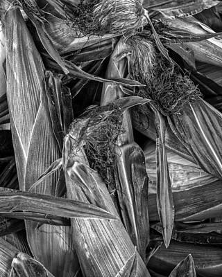 Photograph - Bushel Corn by Bob Orsillo