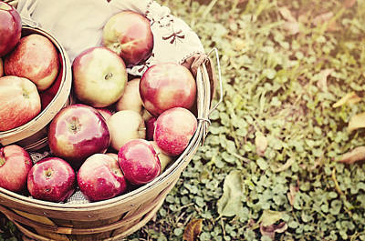 Apple Photograph - Bushel Full by Heather Applegate