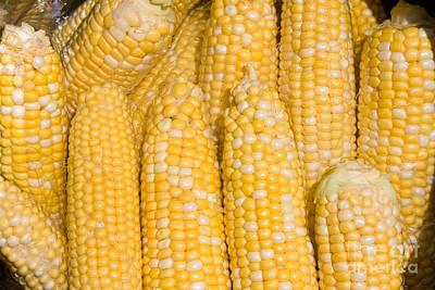 Kitchen Photograph - Bushel Of Pealed Corn  by James BO  Insogna
