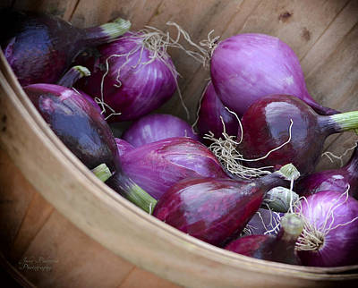 Bushel Photograph - Bushel Of Red Onions Farmers Market by Julie Palencia