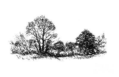 Bushes Art Print