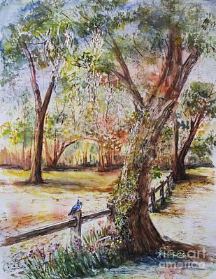 Bushnell Morning Art Print