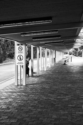 Busstop Photograph - Busstop Peaking by Paul Donohoe