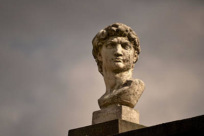 Photograph - Bust Of Apollo by Nadalyn Larsen