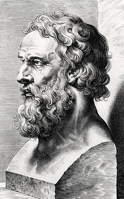 Bust Of Plato  Art Print