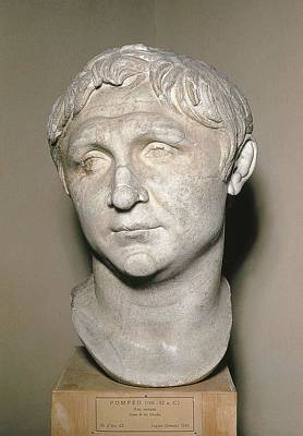 Statue Portrait Photograph - Bust Of Pompey. 1st C. Copy by Everett
