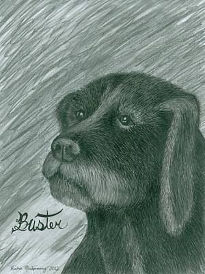 Drawing - Buster by Richie Montgomery