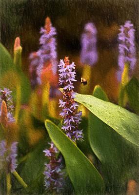 Busy Bee Art Print by Richard Rizzo