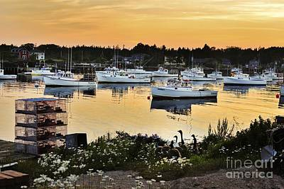 Photograph - Busy Harbor by Karin Pinkham