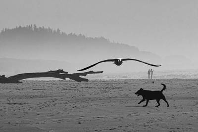 Photograph - Busy Oregon Coast by Wes and Dotty Weber
