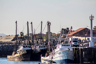 Photograph - Busy Port by Dick Botkin