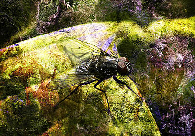 Digital Art - Busybody Fly by J Larry Walker