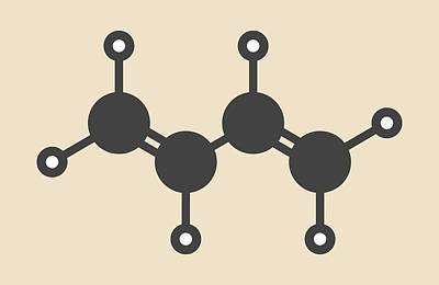 Polymer Photograph - Butadiene Molecule by Molekuul