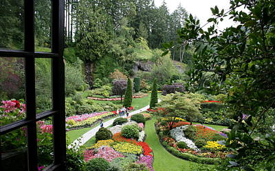 Photograph - Butchart Gardens by Betty-Anne McDonald