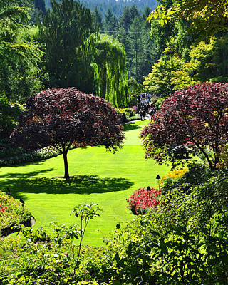 Photograph - Butchart Gardens by Kirt Tisdale