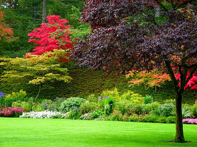 Butchart Gardens Lawn And Tree Art Print