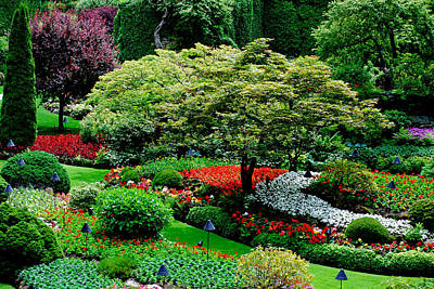 Photograph - Butchart Gardens by Lisa Phillips