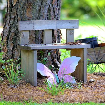 Photograph - Buterfly Bench - Square by Gordon Elwell