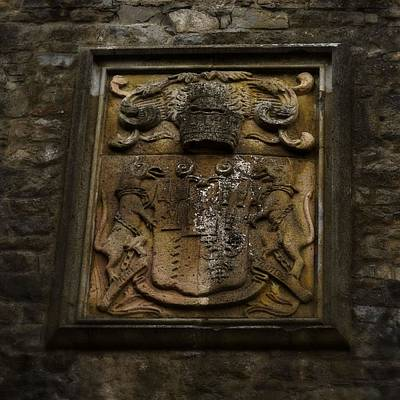 Photograph - Butler Family Coat-of-arms by Nadalyn Larsen