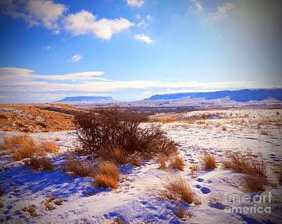 Photograph - Butte And Tumbleweed by Desiree Paquette