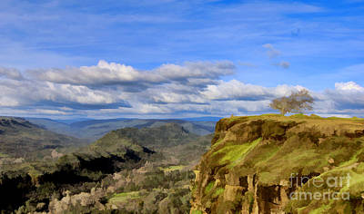 Photograph - Butte Creek Canyon Overlook by Kathleen Gauthier