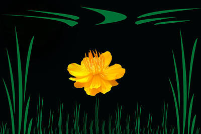 Photograph - Buttercup Delight by Aimee L Maher Photography and Art Visit ALMGallerydotcom