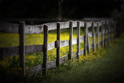 Buttercup Fence Line Art Print by Earl Ball