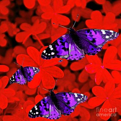 Painting - Butterflies Are Free To Fly by Saundra Myles