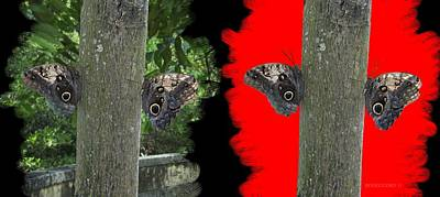 Effect Painting - Butterflies In Digital Art Effect by Mario Perez