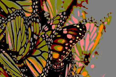 Digital Art - Butterflies by Meganne Peck