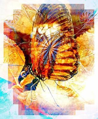 Framed Art Digital Art - Butterfly 6 by Amanda Moore
